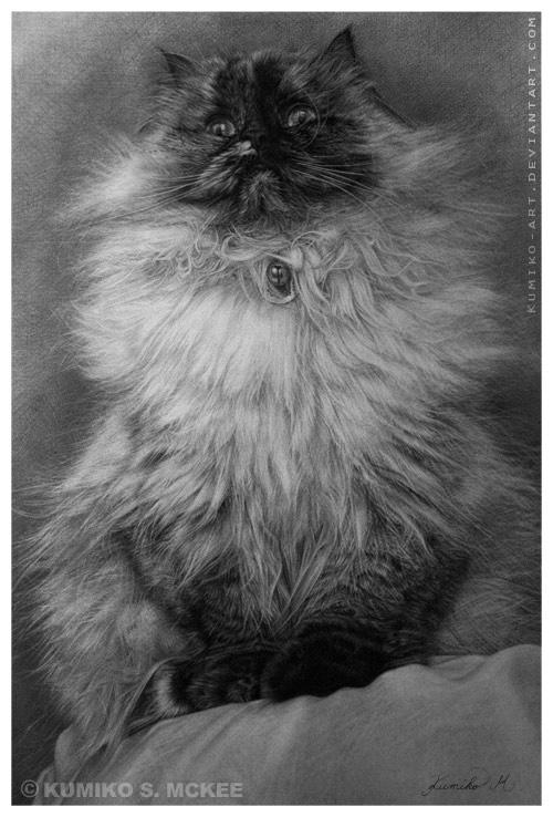 Chibi - Cat Drawing 2 by Kumiko-Art