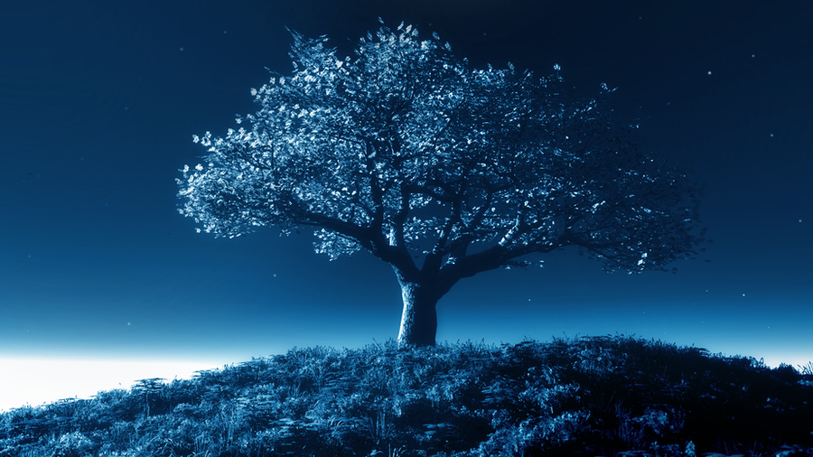 Tree by night by StefmenDA