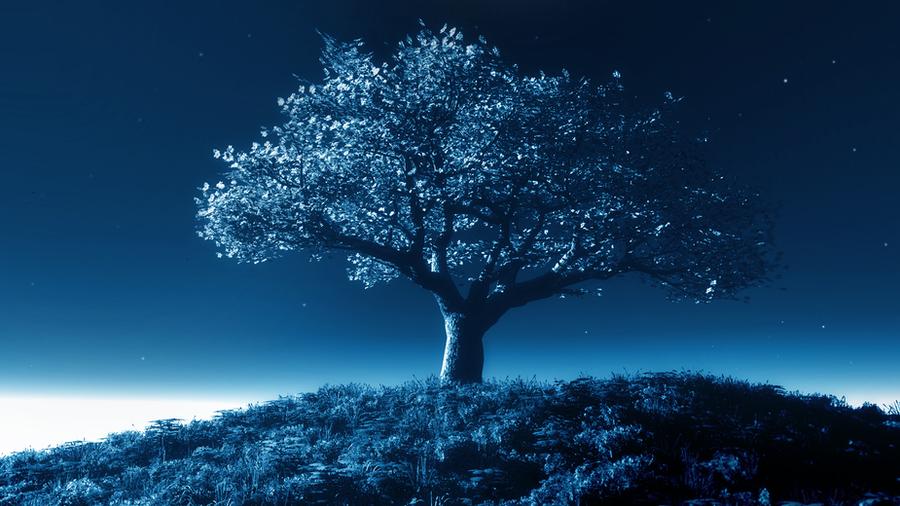 Tree by night by StefmenDA