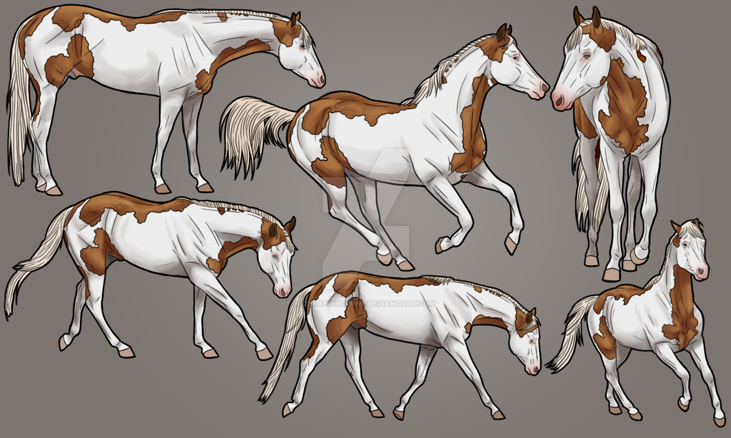 Intoxication Stallion Character Sheet by ZeraphiBourne