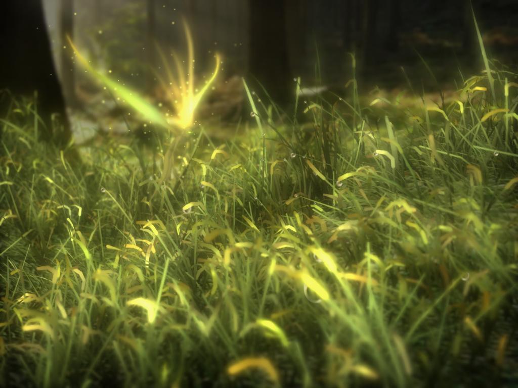 Web Picks #3: GRASS