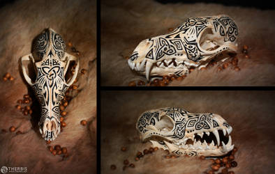 Fox Skull - Auction CLOSED by Therbis