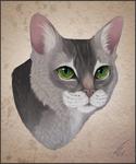 Tsukikoko Cat Portrait