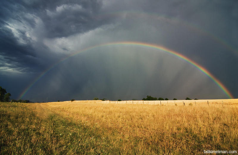 rainbow in fields