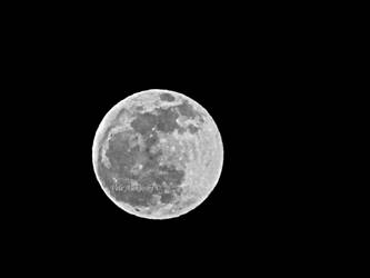 Perfect moon by velephotography