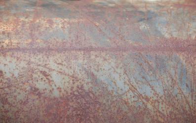 Rust Series 8