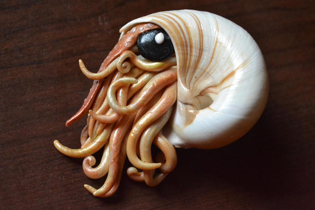 Nautilus by GoldenDaffadowndilly