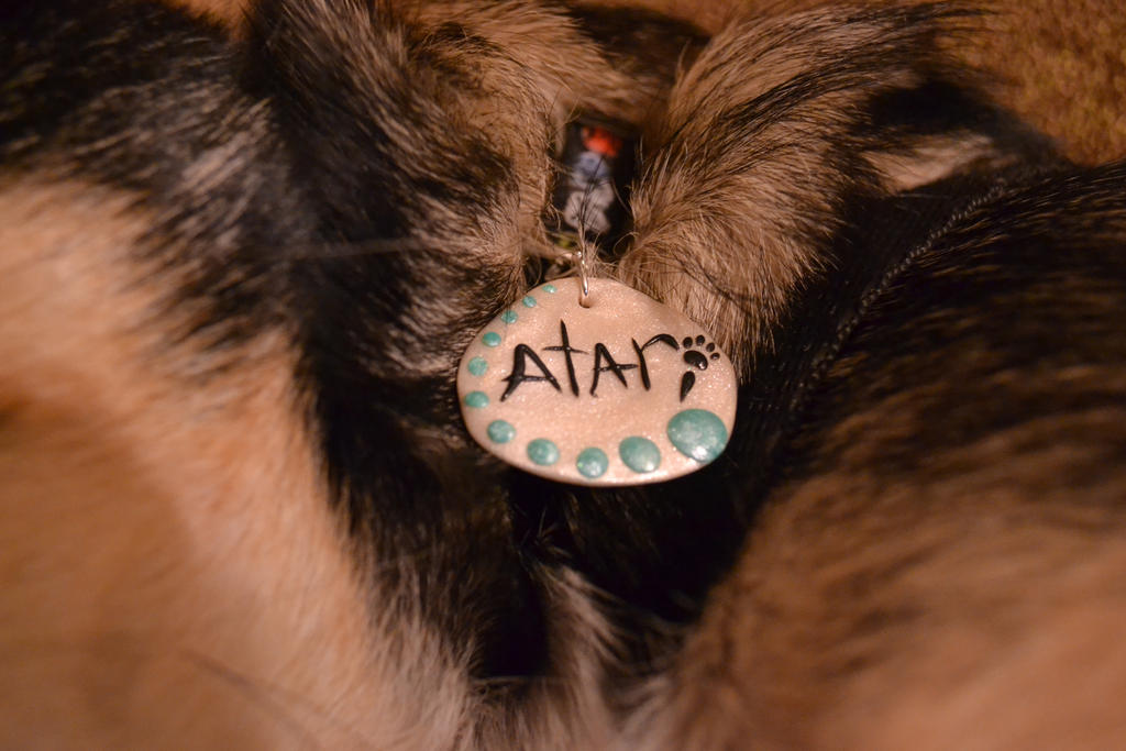 Pet ID Tag by GoldenDaffadowndilly