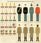 Rank Insignia and Uniforms