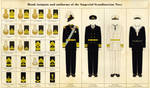 Naval rank insignia and uniforms