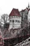Castle of Segesvar/Sighisoara