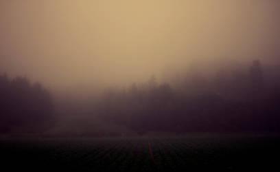 Fog by KPerhonen
