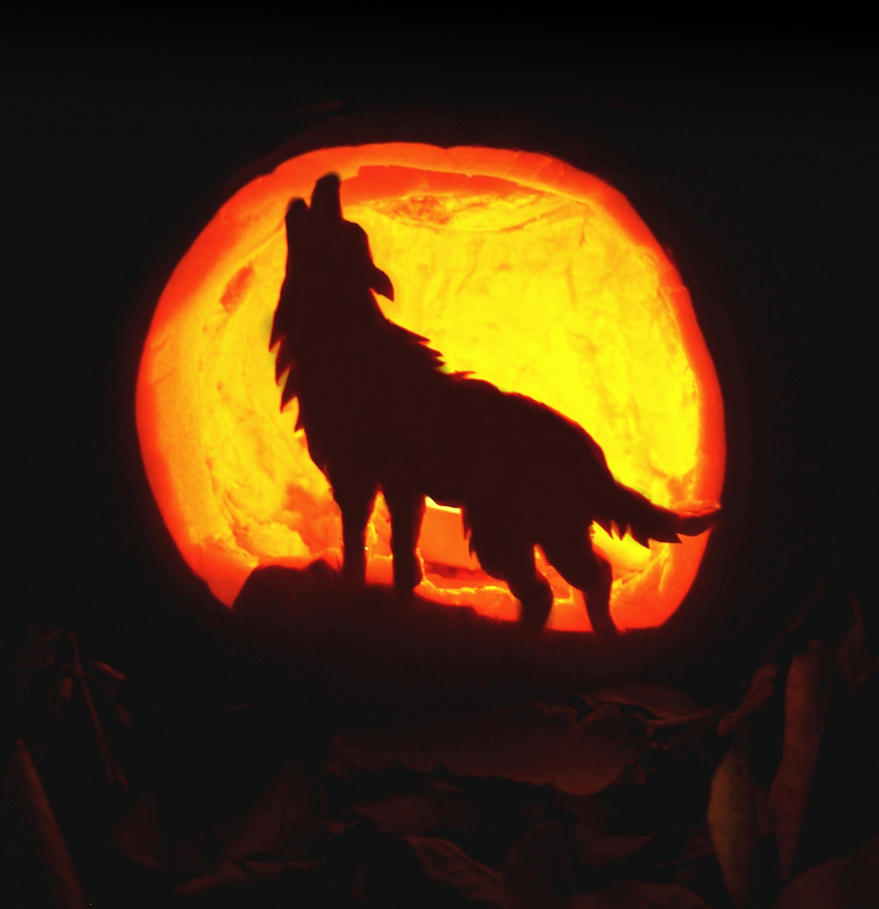Pumpkin carving howling wolf by redhotchilipetra on