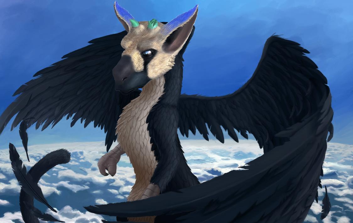 To the sky Trico ! by Istrandar