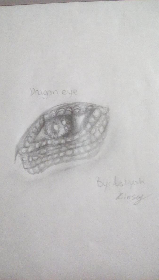 realistic  dragon eye by KinseyA