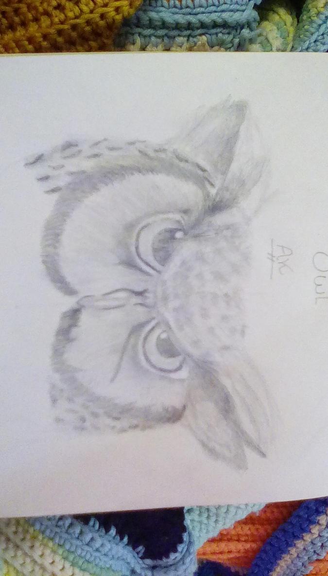 Realistic Owl  by KinseyA