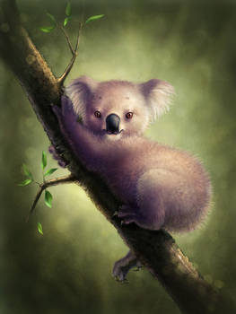 Spherical koala in vacuum by OlesyaGavr