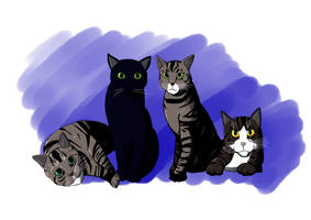 Jodie's Cats by SJWebster