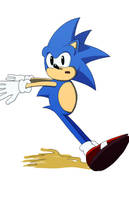 Sonic Stops by SJWebster