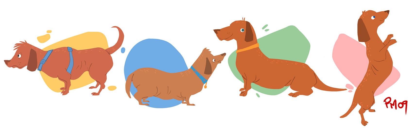 dogs by SomethingEveryDay