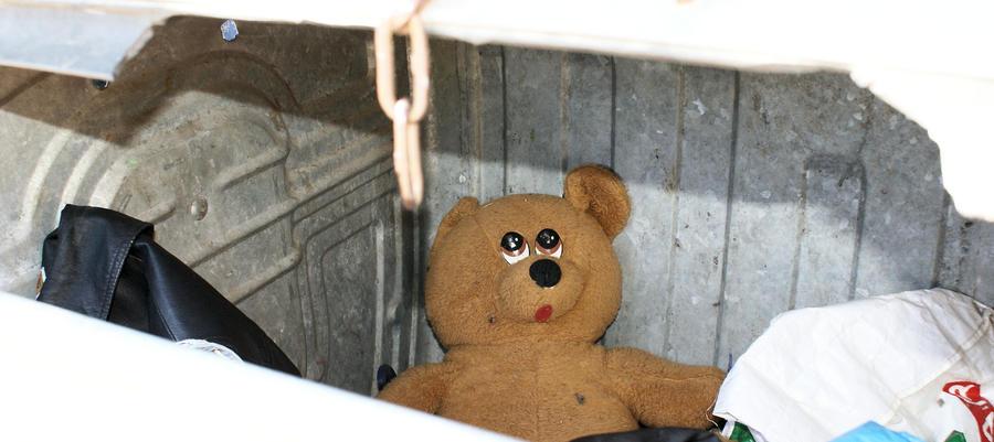 The destiny of teddy bear