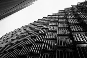 Looking Up.. by chasnam