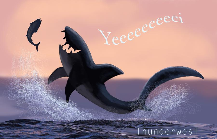 Sharki by Thunderwest