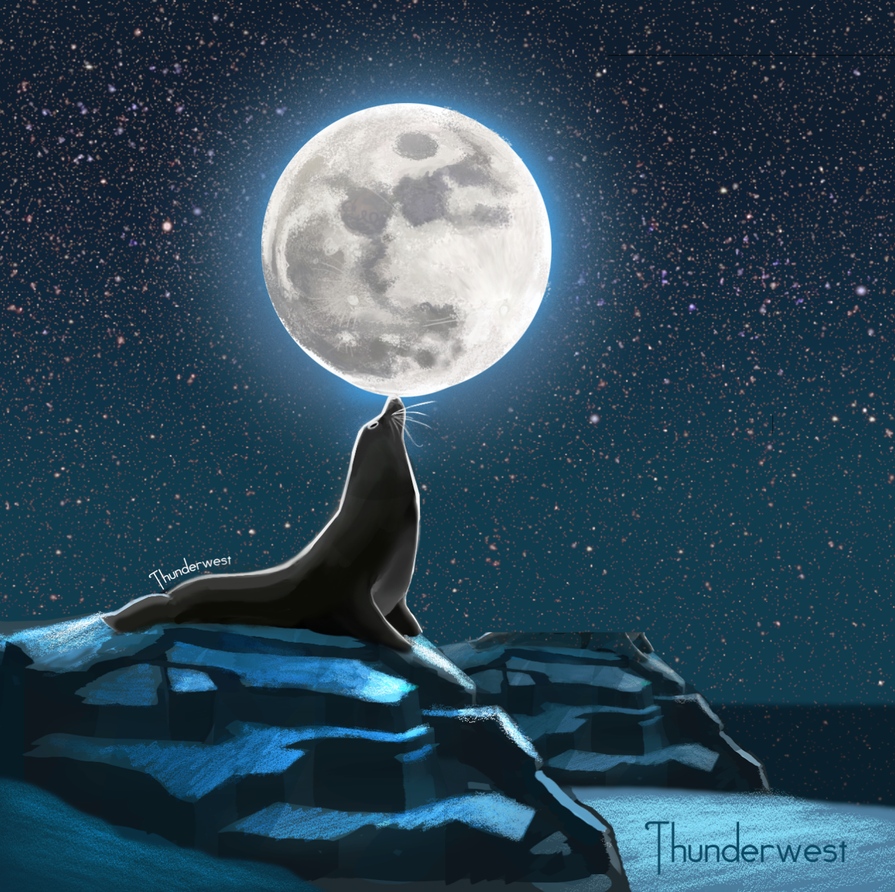 Seal Moon by Thunderwest