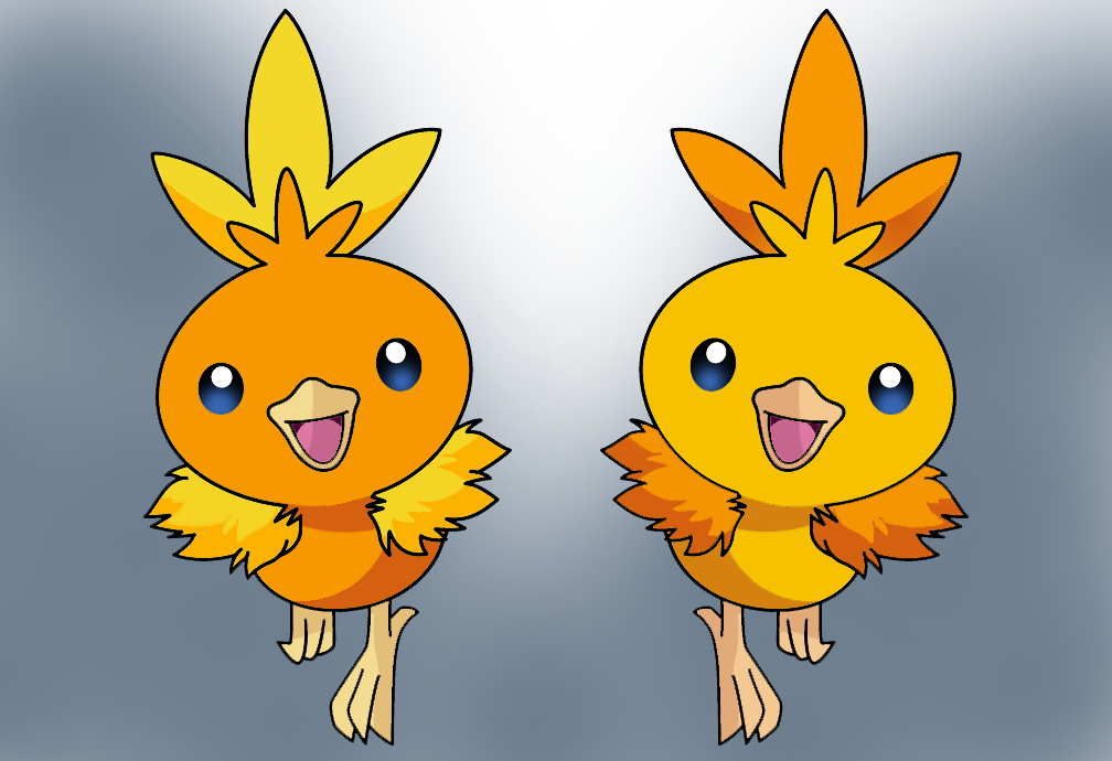Image Gallery Shiny Torchic