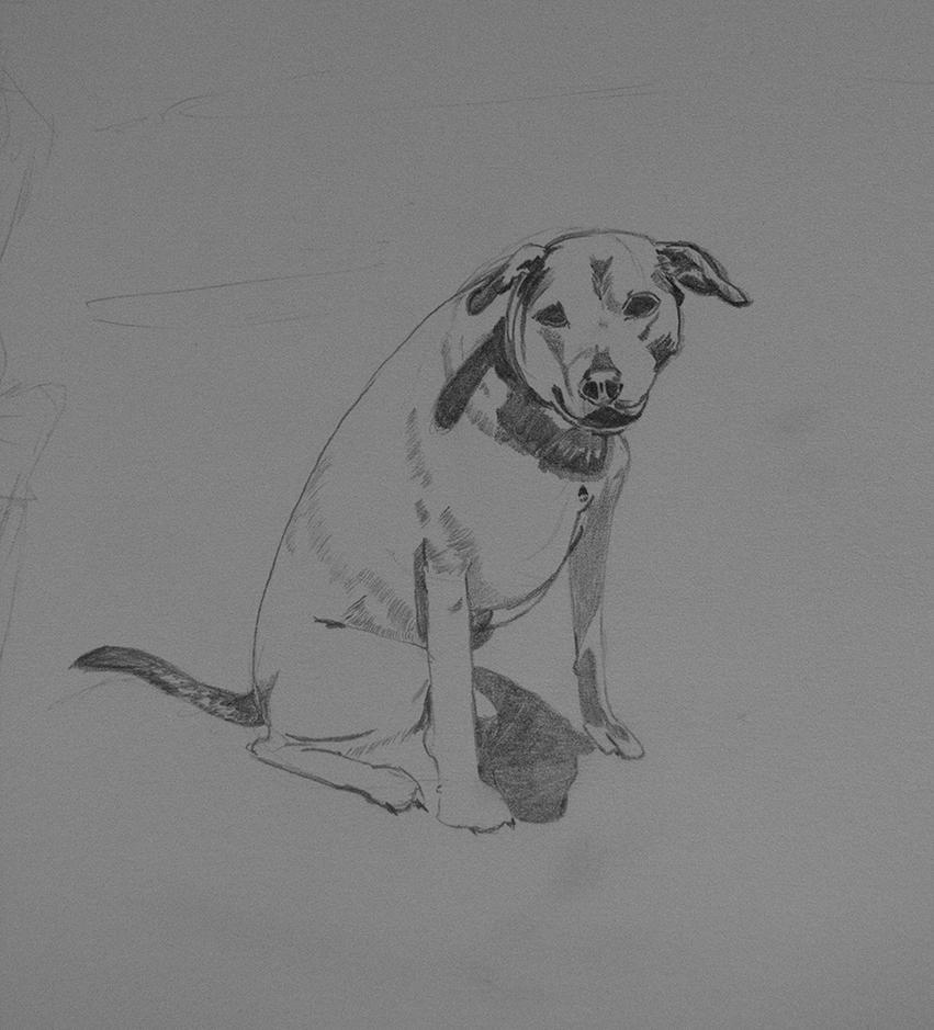 Doggy - Work in Progress by Fallenswordsman