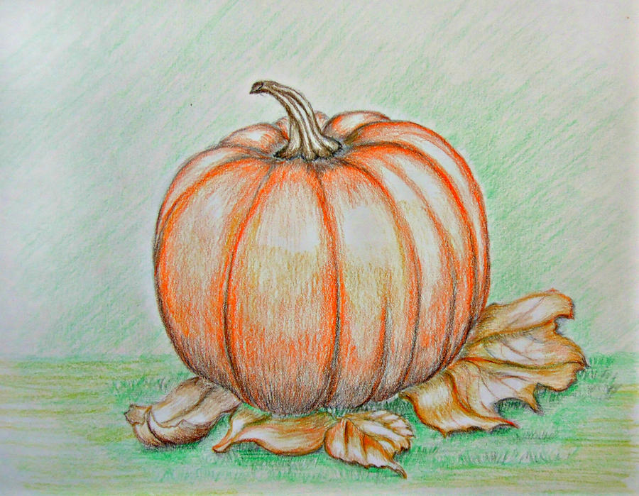 Pumpkin by 123thuraya