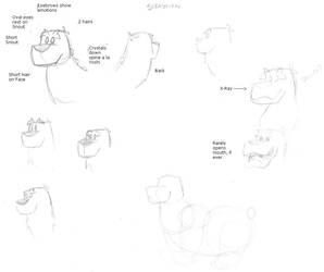 Sebastian Face Sketch