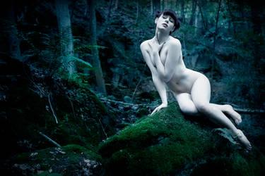 Fairy Mary 1 by DioXina