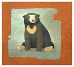 AZ_Sun Bear