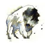 InkAnimals - Bison