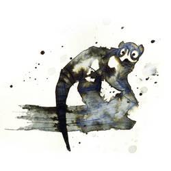 InkAnimals - Coati