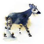 InkAnimals - Okapi
