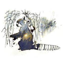 InkAnimals - Red Panda by Duffzilla