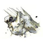 InkAnimals - Sloth