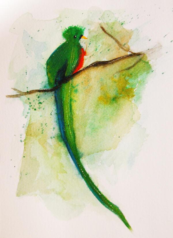 Quetzal by Duffzilla