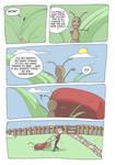 Anty's big adventure