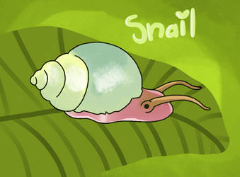 Smile for the snail