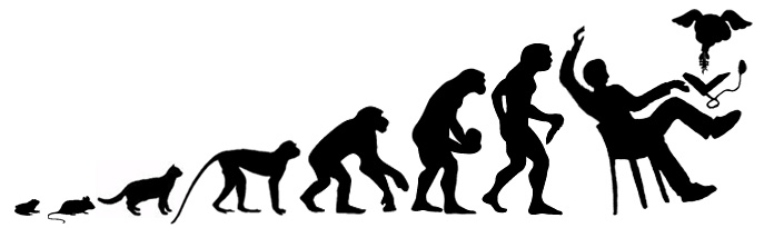 Evolution to Singularity by StoicLewy