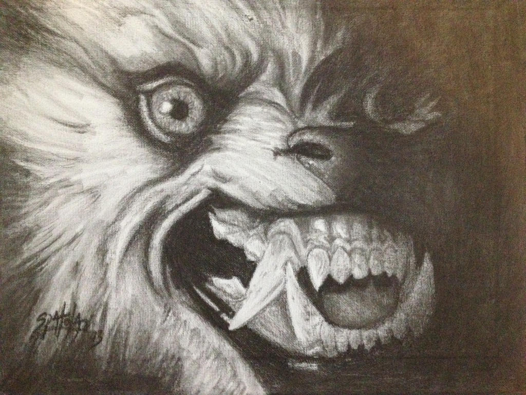 American Werewolf in London Drawing