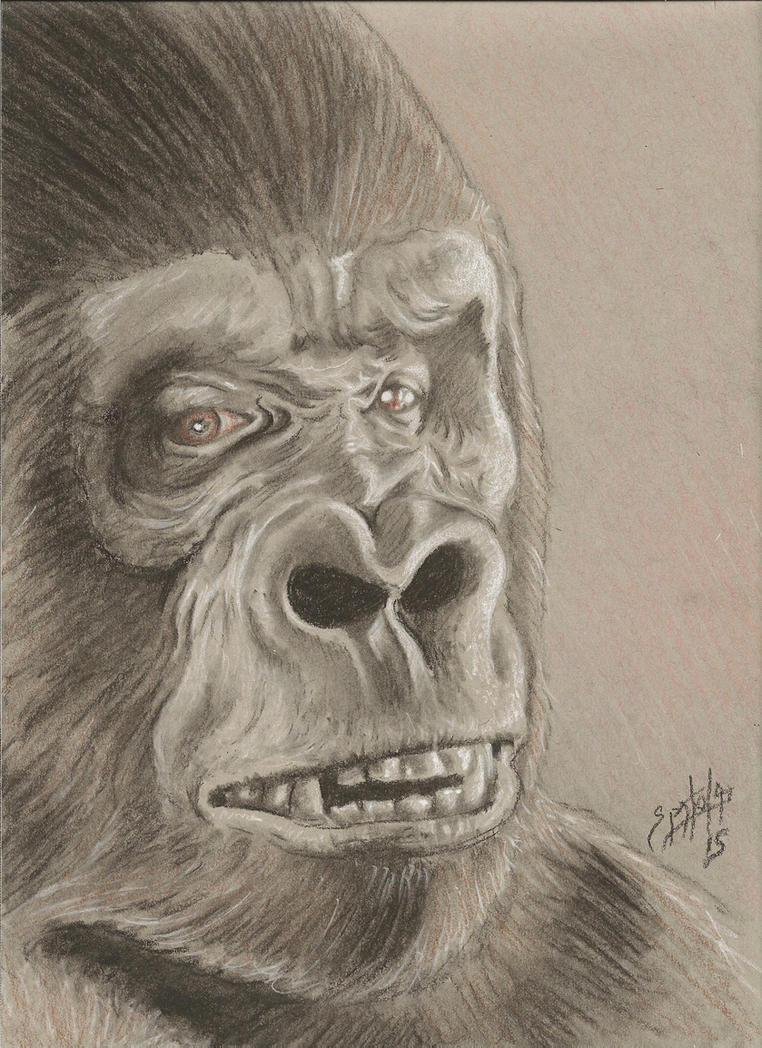 1976 King Kong by PaulSpatola