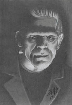 Shadows in the House of Frankenstein