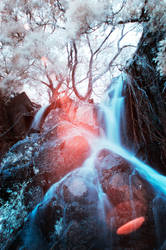 Infrared Flare