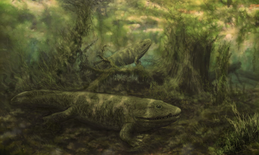 ichthyostega by ngzver on deviantart