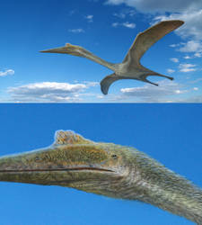 Quetzalcoatlus by NGZver