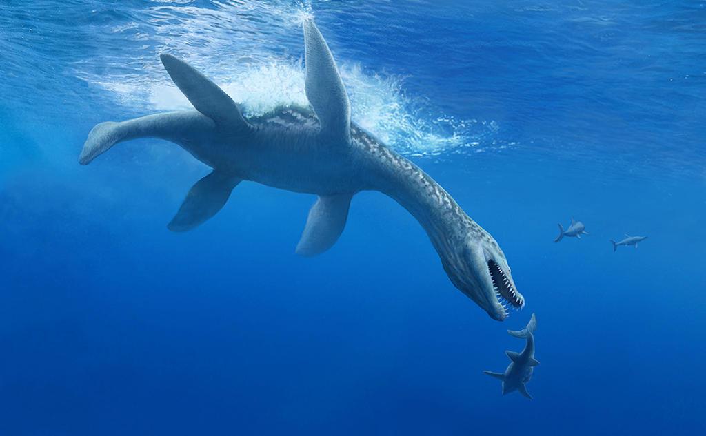 rhomaleosaur by NGZver